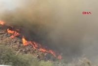 Muğla Bodrum'da Korkutan Yangın